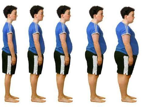 Child Obesity Essay Introduction Mistyhamel